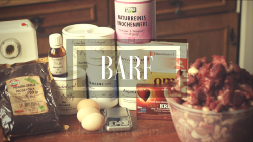 dieta BARF suplementy